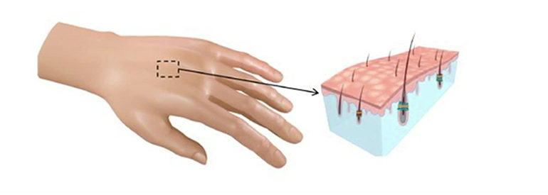 Sensor Technology Mimicking The Feeling Of Skin And Hair
