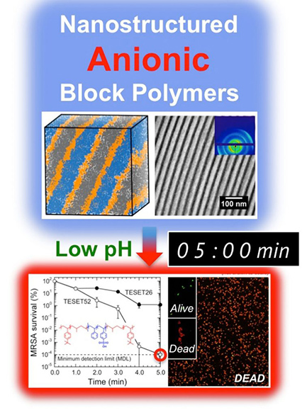 anionic-polymers